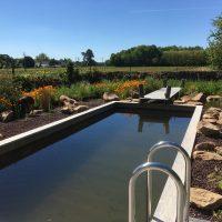 swimming pool at B&B Loire